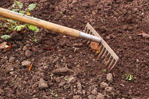 nettoyage des feuilles mortes et mauvaises herbes